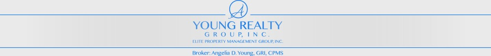 A Young Realty Group logo