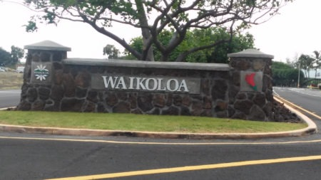 Waikoloa Village Market Update for Q1