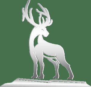 Silver Elk Group